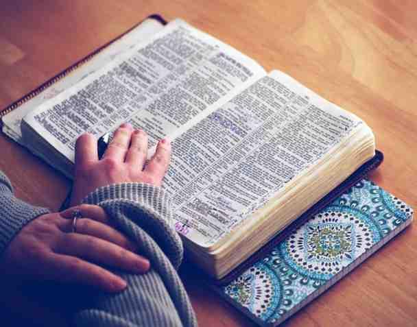 Portoghese basico: libro e quaderno