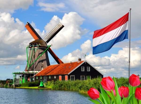 Aprender Neerlandés: Cómo Alcanzar Un Nivel Intermedio