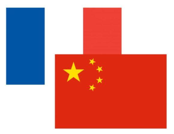 Lo studio di una lingua: francese e cinese insieme